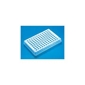 PCR-96 plate, skirted ,thermo-fast 25pcs =SP0037