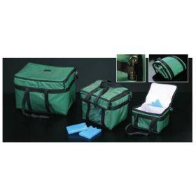 Deltalab Isothermische zak 27 L groen