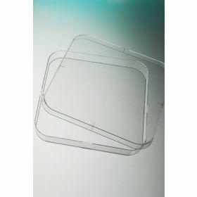 Petriplaat 120x120mm vierkant, aseptisch