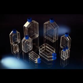 TC-flask Nunclon 25cm²  +filterstop 160 Nunc Tissue culture flask 25cm² Angled+filter