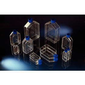 TC-flask Nunclon 80cm² rechte nek +filterstop nunc tis.cult.flask+filter cap str.75cm²